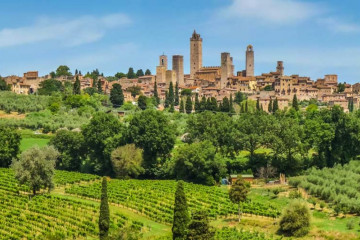 San Gimignano Vineyard Wine Tasting Tour